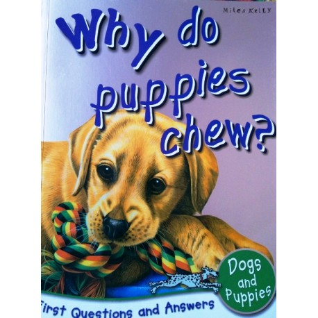Why Do Puppies Chew?